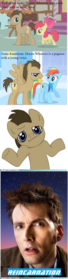 Doctor Whooves - its regeneration not reincarnation dummies ;)