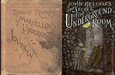 his is the first in the series of the adventures of Baron Trump. a Victorian era book about a boy named Baron Trump that has some strange coincidences in i Fantasy Books, Coincidences, Goods And Services, Baron, Journey Online, Swan, Kindle, Ebooks, Desserts