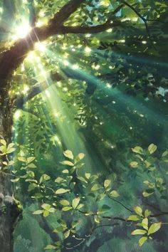 Sunrays through the gree tree illustration art Fantasy Landscape, Landscape Art, Landscape Paintings, Fantasy Art, Art Studio Ghibli, Creation Image, Art Et Nature, Art Et Illustration, Scenery Wallpaper