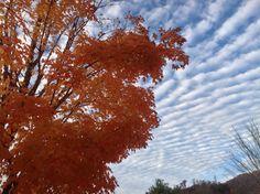 From viewer David Onder - Interesting cloud pattern in western North Carolina.  Picture taken on campus of Western Carolina University.