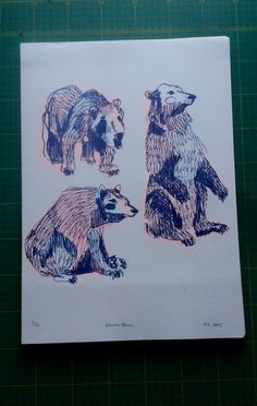 This is a riso print showing original drawings of bears seen in Warsaw, Poland a few years ago.    Limited to an edition of 50, each print is