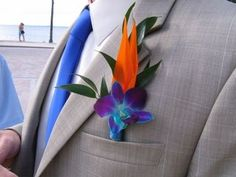 boutonniere ideas blue bom dendrobium orchid with a piece of bird of paradise and Italian ruscis great bout for a beach wedding./ centralflweddingflowers/ www.callaraesfloralevents@yahoo.com
