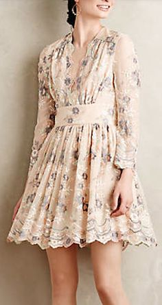 beautiful embroidered silk dress