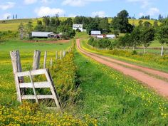 *🇨🇦 Rural scene (Prince Edward Island, Canada) [photographer unknown, old Panoramio photo] Back Road, Prince Edward Island, New Brunswick, Anne Of Green Gables, Great View, Places To See, Beautiful Places, National Parks, Scenery