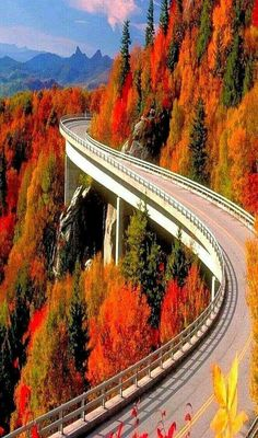 Linn Cove Viaduct, Grandfather Mountain, Blue Ridge Parkway, North Carolina