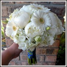 The bouquet was hand-tied and consisted of white peonies, white hydrangea, white lisianthus and the brides favorite, white gerbera daisies. Daisy Bouquet Wedding, Gerbera Daisy Bouquet, Hydrangea Bouquet, Peonies Bouquet, Blue Hydrangea, Rose Bouquet, Wedding Flowers, Gerbera Daisies, Yellow Daisies