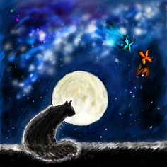 The cat in the moonlight