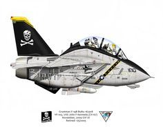 F14 Tomcat, the Jolly Rodgers.....