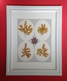 Lacy Floral Pressed Botanical by Lois Lawrence of MyStoningtonGarden, $50.00
