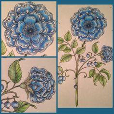 Johanna Basford   Colouring Gallery / Vera Elias