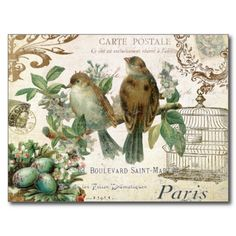Get your hands on a customizable Vintage French postcard from Zazzle. Find a large selection of sizes and shapes for your postcard needs! Images Vintage, Art Vintage, Vintage Birds, Vintage Postcards, Vintage Prints, French Vintage, Vintage World Maps, French Postcards, Images Victoriennes