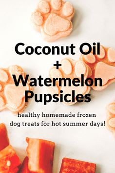 Frozen Coconut Oil Watermelon Pupsicles   House Fur Easy Dog Treat Recipes, Homemade Dog Treats, Healthy Dog Treats, Dog Food Recipes, Homemade Food, Dog Popsicles, Homemade Popsicles, Frozen Dog Treats, Coconut Oil For Dogs