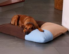 The Divan dog bed cushion is the perfect place to snuggle and to take a little nap. The elastic high-quality latex filling is optimized for our dog pillows and beds.
