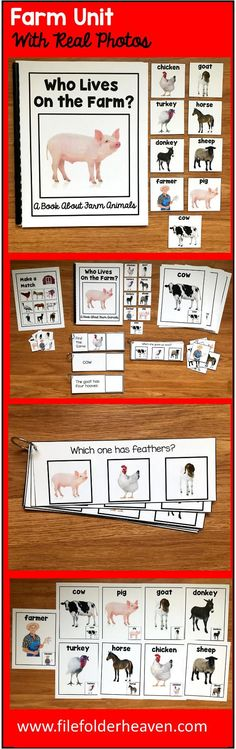 """This Farm Unit w/Real Photos is packed full of hands-on activities for your farm theme.  Activities Included With This Farm Unit:  1. Adapted Book (Interactive Book) w/ interactive matching pieces 2. 1 Set of Interactive Bulletin Board Farm Animals Posters (9 total) 3. Farm Animals Non-Identical Matching Mat 4 3 Sets of """"Big Flips"""" Matching Activities  5. 1 Set of Farm WH-Questions"""