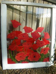 Bright Red Poppies  on old wooden window