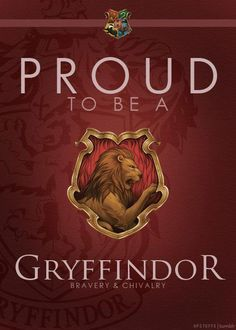 Gryffindor. Yes, I know I already put this on my favorites board, but I like this picture more.