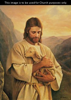 The Lost Lamb, by Del Parson; GAB 64; Luke 15:4–7; John 10:11–16; Alma 5:37–42; this image is to be used for Church purposes only.