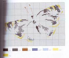 ru / - anapa-mama - Part 10 of 10 Small Cross Stitch, Just Cross Stitch, Cross Stitch Animals, Cross Stitch Charts, Cross Stitch Patterns, Butterfly Mosaic, Butterfly Cross Stitch, Cross Stitch Flowers, Cross Stitching