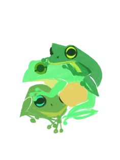 Green family frogs