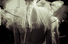 #ModeWalk #couture #white #wings