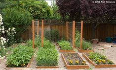Urban Potager, 8 (?) beds. I love how the trellises are lined up...they add nice vertical interest.