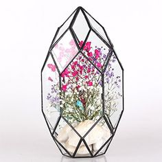 Large Irregular Polyhedral Geometric Glass Terrarium Lantern Succulent Plant Flowerpot 11 inches Height