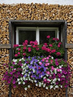 See photos of Austria's lake country in this travel photo gallery from National Geographic. Window Box Flowers, Balcony Flowers, Window Boxes, Window Sill, Flower Boxes, Window Planters, Garden Windows, Garden Trellis, Parcs