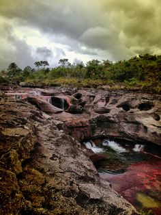 Caño cristales Colombia Amazing Photos, Cool Photos, Waterfalls, Suitcase, Places To Go, Landscapes, Adventure, Artist, Outdoor