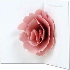 carte pop-up rose