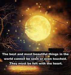 The most beautiful things on earth cannot be seen or even touched.