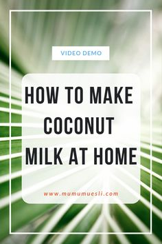 Learn how to make coconut milk at home with this all-inclusive video demo! (Health Benefits of Coconut Milk Coconut Milk Benefits, Make Coconut Milk, Coconut Milk Recipes, Healthy Eating Blogs, Clean Eating Food List, Healthy Foods, Breakfast Smoothie Recipes, Vegan Breakfast, Foods For Clear Skin