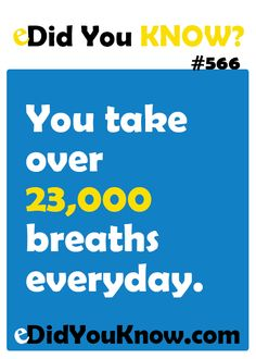 You take over 23,000 breaths everyday. http://edidyouknow.com/did-you-know-566/