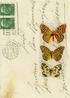 """""""Sending Butterflies and Love"""" by Maria-Thérèse Andersson. Postcard"""