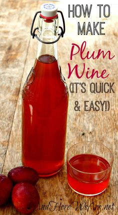 "Quick and Easy Plum Wine recipe from ""And Here We Are...""  -  sounds delicious!"
