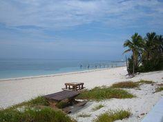 Crucero a las Bahamas, belleza y exuberancia  - http://revista.pricetravel.com.mx/cruceros/2015/08/03/crucero-a-las-bahamas-belleza-exuberancia/