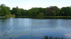El lago de Prospect Park. En el corazón de Brooklyn, el distrito más en boga de Nueva York, se encuentran las tres joyas del «borough»: Prospect Park, el Museo de Brooklyn y el Jardín Botánico de Brooklyn