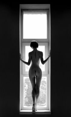 The beauty and the window