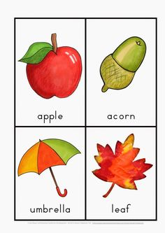 This popular series of learning to read and write resources for each season have now been bundled as one file and discounted (30% savings compared with purchasing each file) for Pre-K and K teachers. These centers are ideal for emergent readers as children are given the opportunity to construct sentences with basic structures using a …