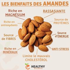 eliminate cholesterol plaque buildup in your arteries - ➡ Les bienfaits des amandes, parfaites en collation pendant la journée. Proper Nutrition, Sports Nutrition, Nutrition Tips, Health And Nutrition, Health Tips, Nutrition Resources, Nutrition Month, Fitness Nutrition, Health And Wellness