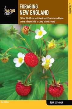 Falcon Guide Foraging New England: Edible Wild Food and Medicinal Plants from Maine to the Adirondacks to Long Is...