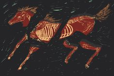 Crystal Castle, Horse - Andrea Rossi Illustration