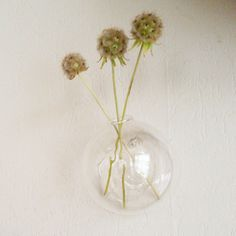 Wall vase - glass