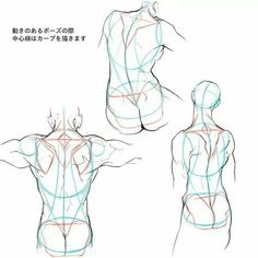 Exceptional Drawing The Human Figure Ideas. Staggering Drawing The Human Figure Ideas. Human Figure Drawing, Figure Drawing Reference, Art Reference Poses, Anatomy Reference, Body Anatomy, Anatomy Art, Anatomy Drawing, Drawing Drawing, Drawing Tips