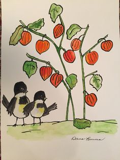 """Watercolor & ink by Donna Bouma. """" Black capped chickadees & Chinese lanterns."""""""
