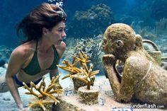 mergulho fundo do mar - Pesquisa Google
