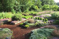 How The Thyme Garden Herb Company in Alsea, Oregon is doing its part to operate a sustainable and earth-friendly business. Oregon Road Trip, Road Trips, Oregon Flower, Flower Farm, Herb Garden, Sustainability, Beautiful Homes, Summertime, Restoration