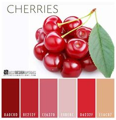 10 Mouthwatering Fruity Color Palettes | Best Design Options