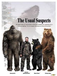 "hah ha... I can see Renee (Finding Bigfoot) saying now, ""I just can't say it was a bigfoot. It could have been a person, or bear...."""