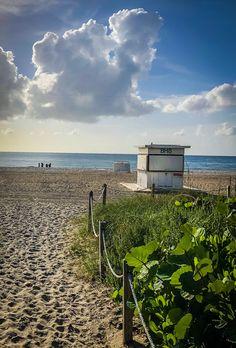 Miami Beach, Disneyland, Travel Destinations, Travel Tips, Paris, North America, Career, Mexico, Blog