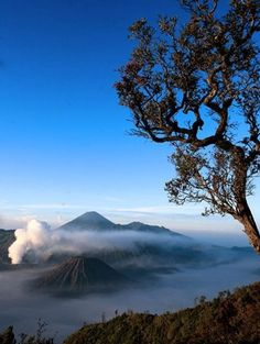 Mount Bromo is an active volcano and part of the Tengger massif, in East Java, Indonesia. At 2,329 metres (7,641 ft) it is not the highest peak of the massif, but is the most well known.